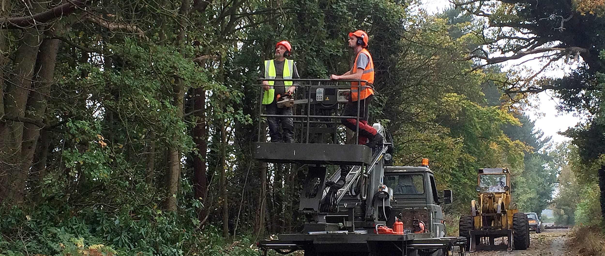 20RE_TreeServicing2500x1060