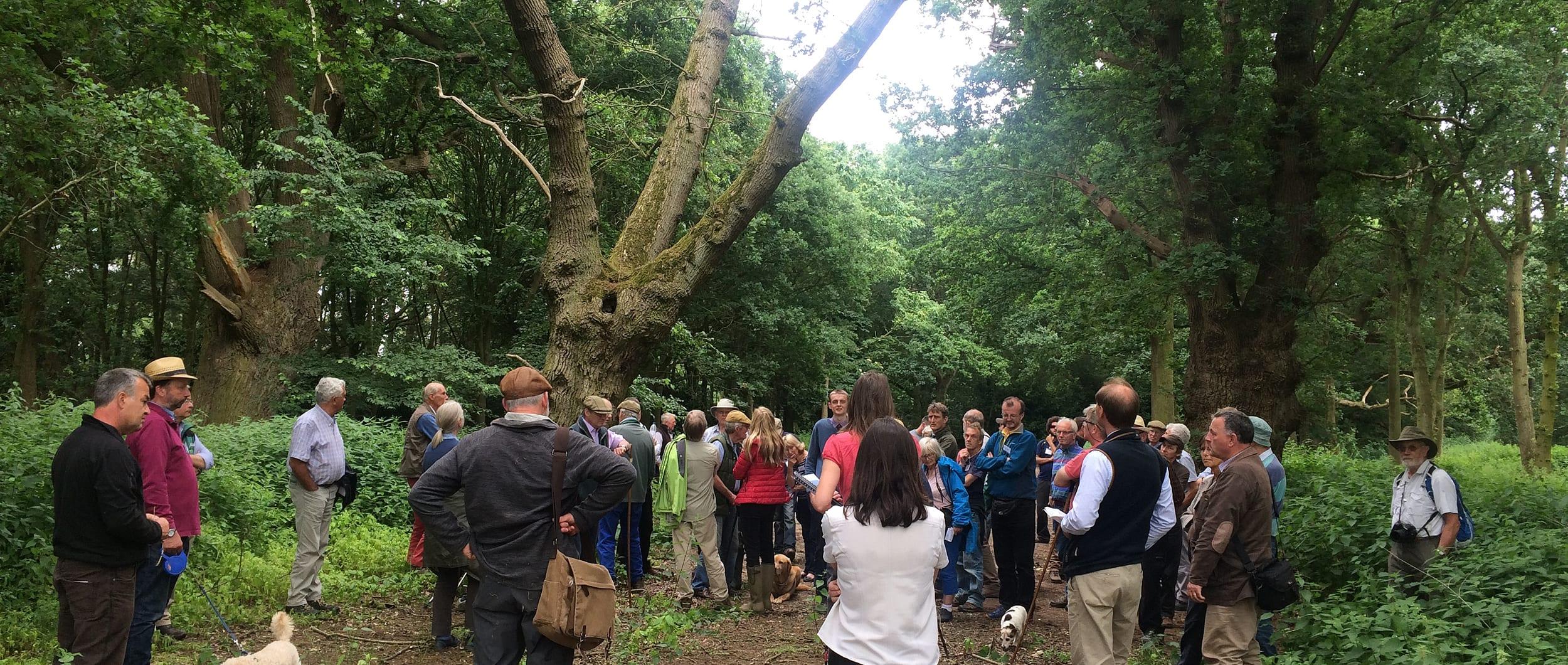 Forestry Society visit
